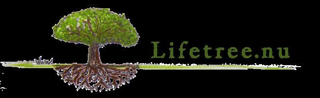 logo lifetree.nu retina